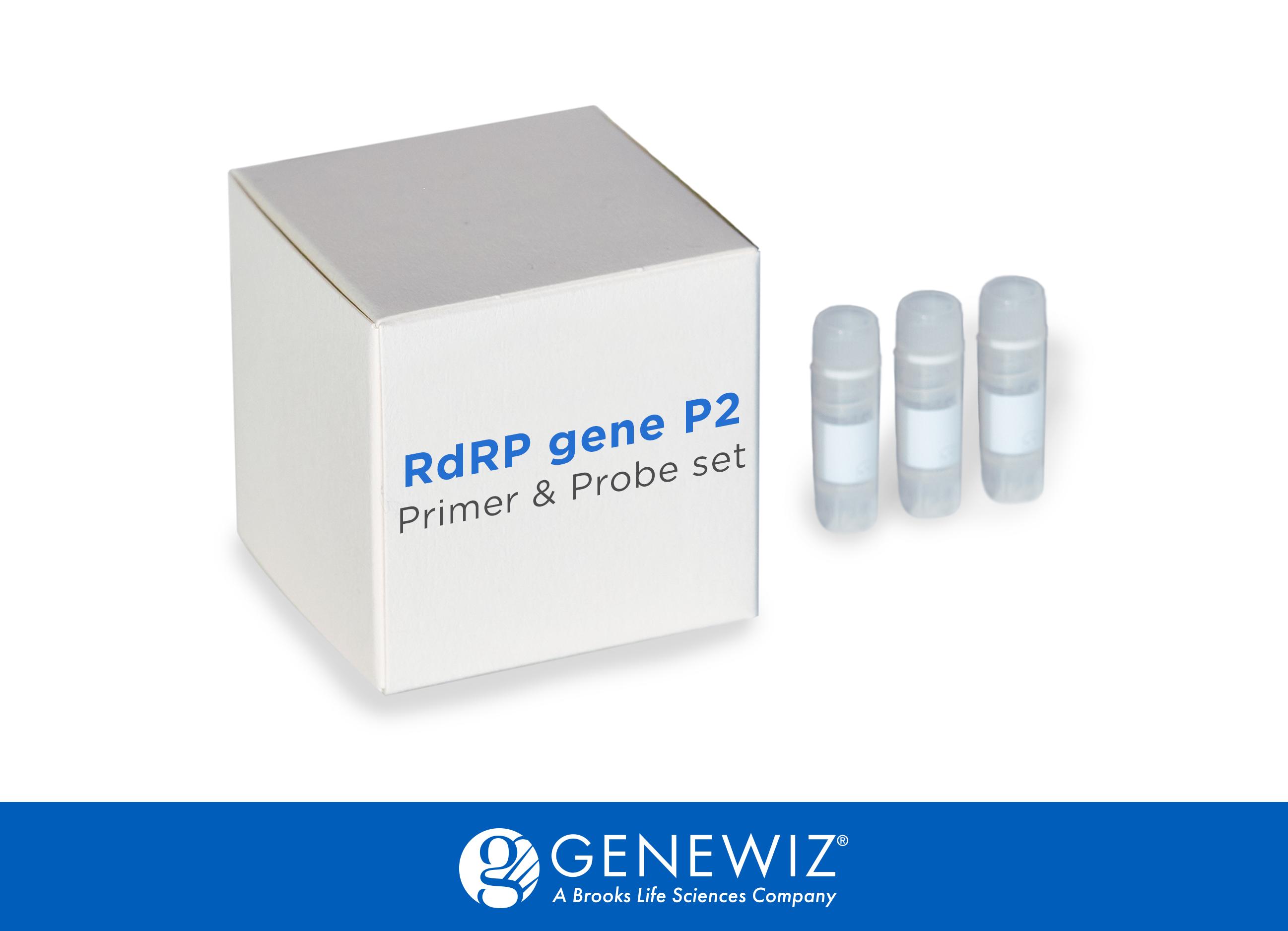 RdRP gene P2 Primer & Probe set